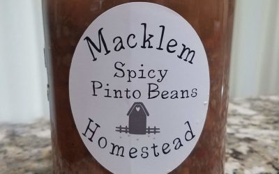 Canned Spicy Southwestern Pinto Beans