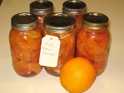Canned Pink Navel Oranges