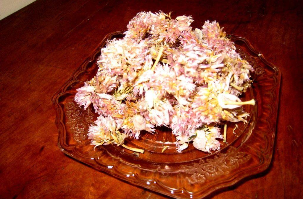 Tarragon Chive Flower Chicken