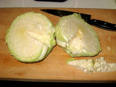 Chopped Cabbage for Sauerkraut