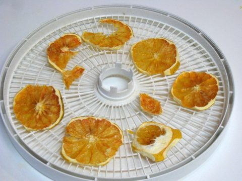 Dehydrated Grapefruit
