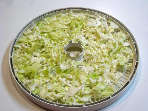Dehydrator Tray with Cabbage