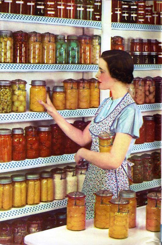 Prepper Or Traditional Housewife