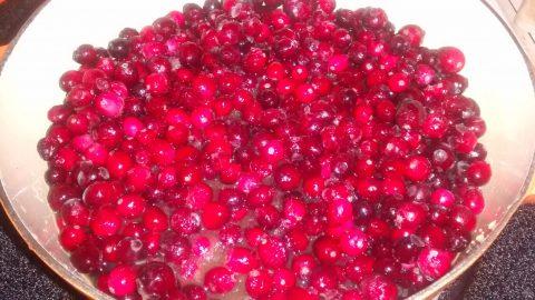 cranberry.sauce2